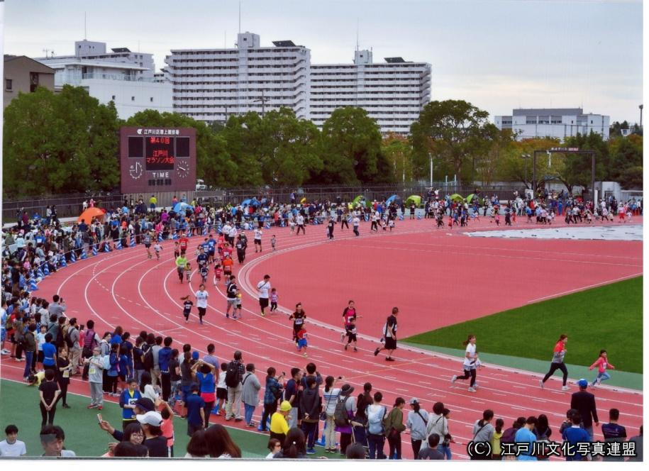 68 天然芝の江戸川区陸上競技場 江戸川区ホームページ